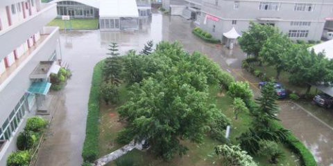 Typhoon hit, Liri Tent teach you how to protect temporary buildings