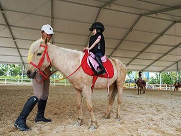 Indoor Horse Riding Arena for sale