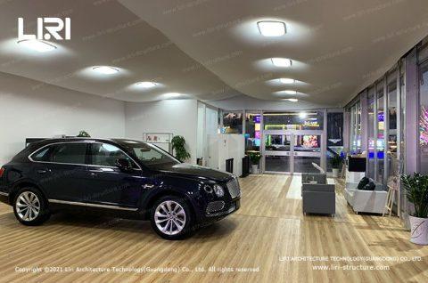 Professional Car Dealership Showrooms